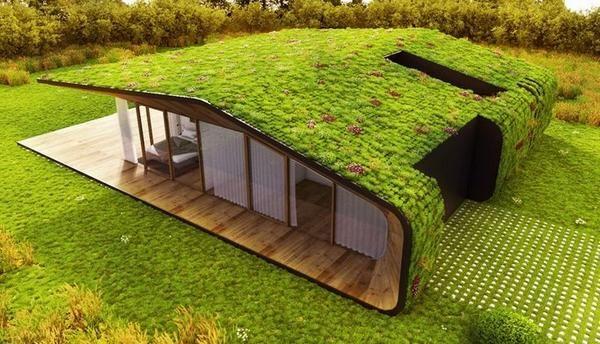 Comment faire pour avoir une toiture verte
